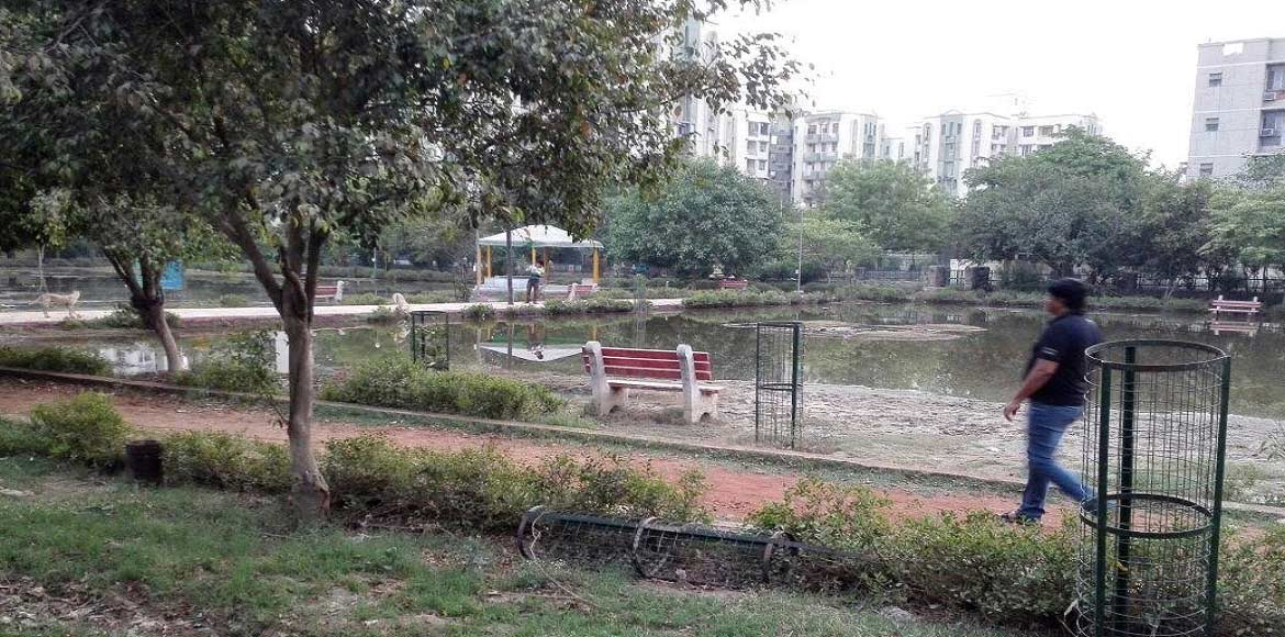How sewer water proved a blessing in disguise for a Dwarka park