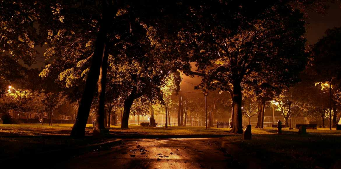 Why are Dwarka Sec 22 residents scared of the dark?