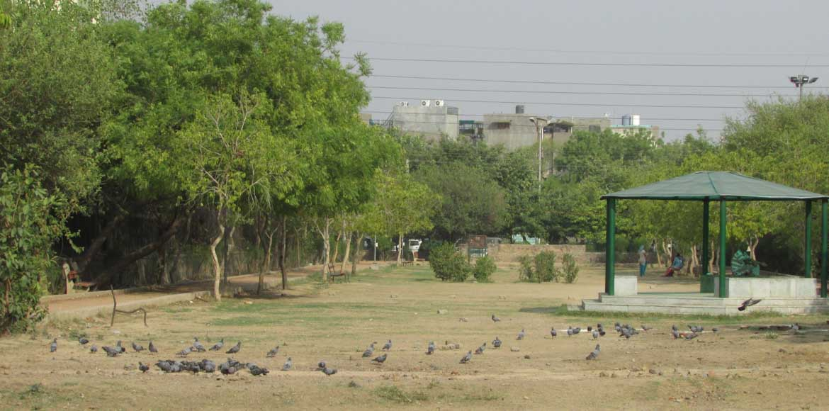Dwarka, Sector 7: Why can't the grass be greener on this side?