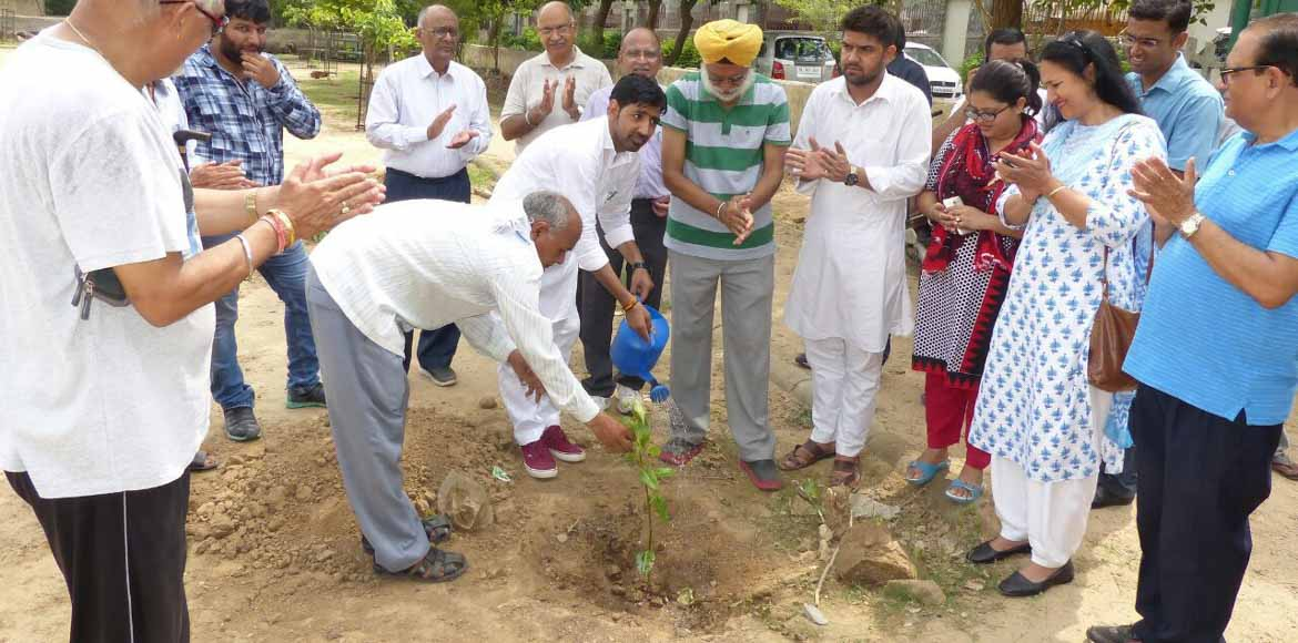 Dwarka: A tree-planting drive for a greener tomorrow!