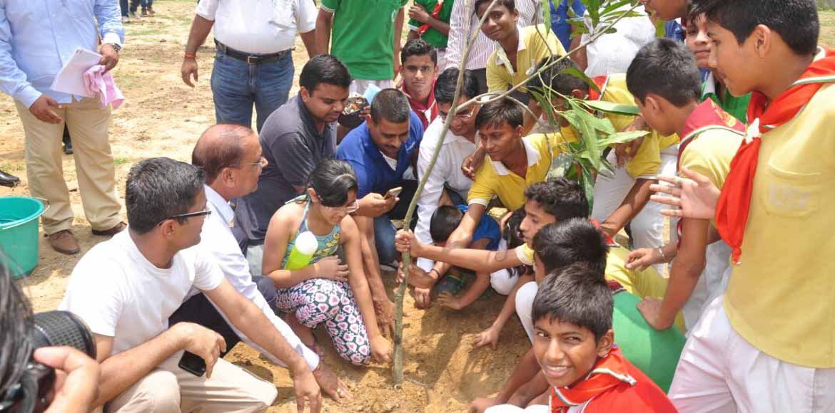 A boost to life: Authority plants saplings in Noida park