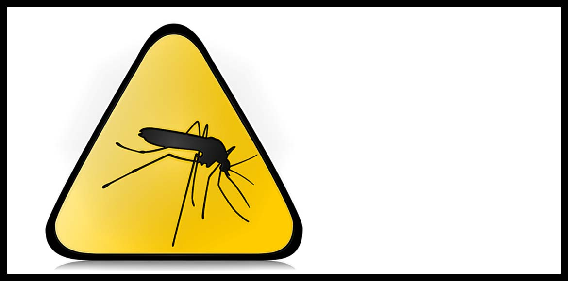 Chikungunya makes inroads into Gurgaon