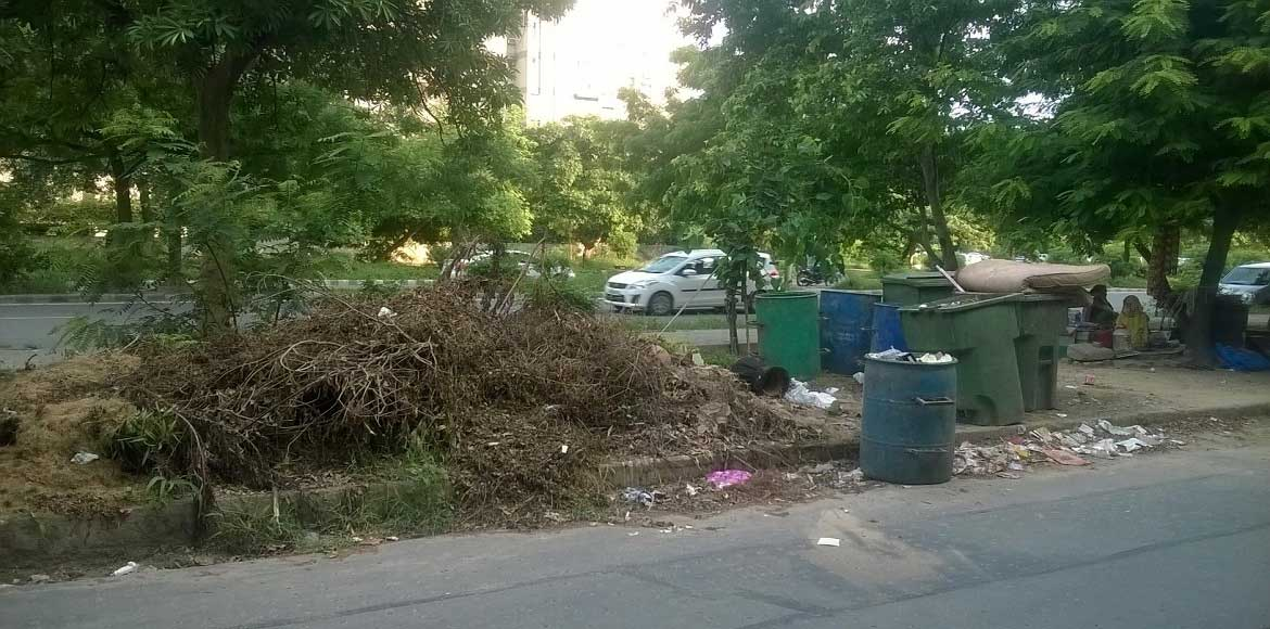 Dwarka: Will somebody please own up to the horticulture waste!