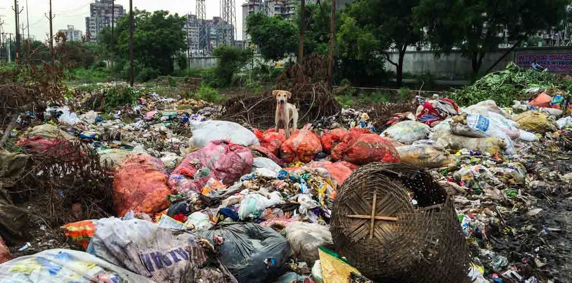 Gaur Green City: The society near the garbage dump