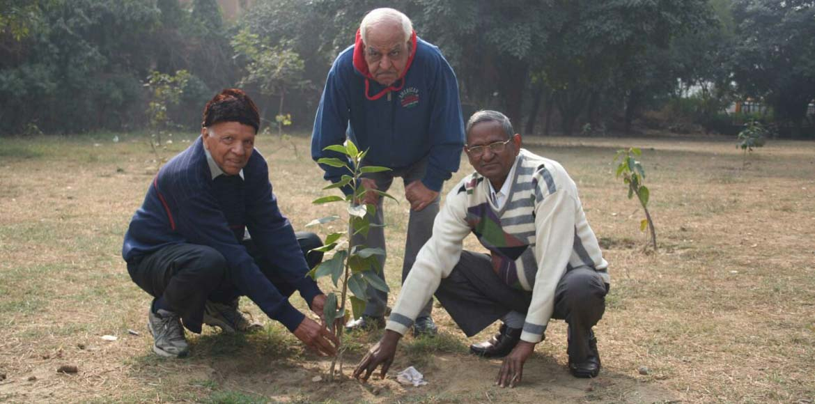 Dwarka seniors walk the talk, give back to nature!