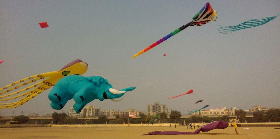 PHOTO KATHA: OMG! Yellow squid chased a blue elephant in Dwarka