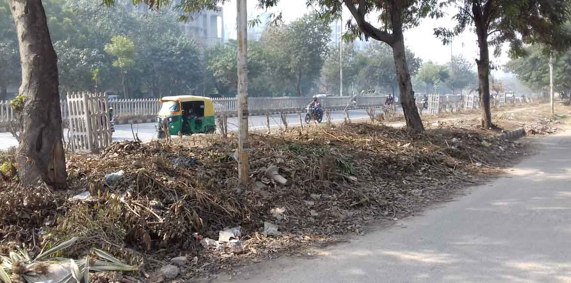 Who is supposed to clean Dwarka's horticultural waste?