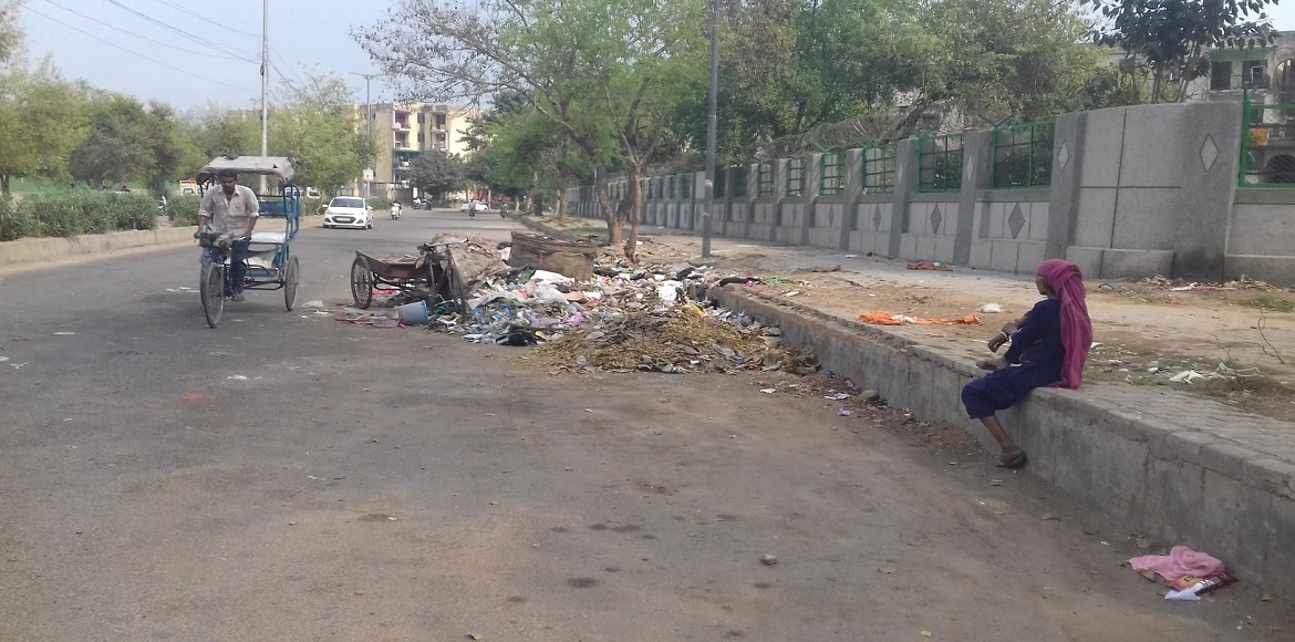 Dwarka: Is the MCD so busy in polls it can't take care of sanitation?