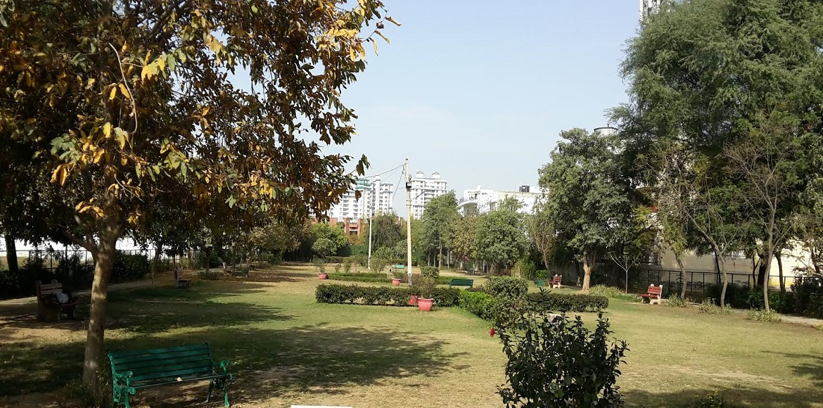 How the popularity of parks in South City I, Gurga
