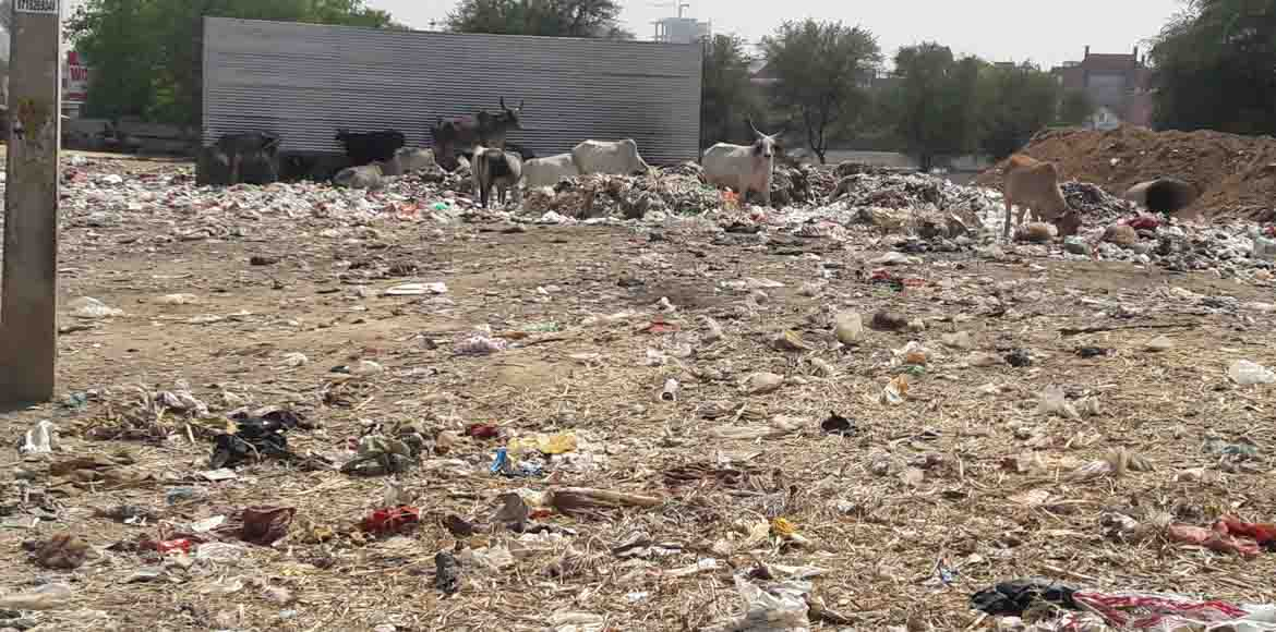 Sec 56, Gurgaon: Garbage dump near Devinder Vihar irks residents