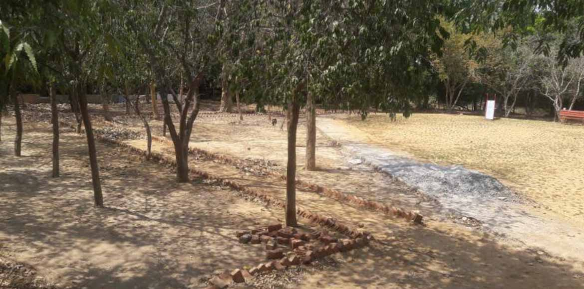 Sec 56, Gurgaon: Why residents stay away from this