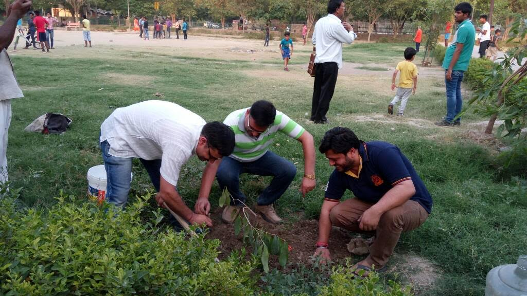 Dwarka: Do you need an occasion to plant trees?