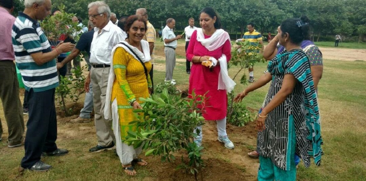 Transforming Dwarka one park at a time...