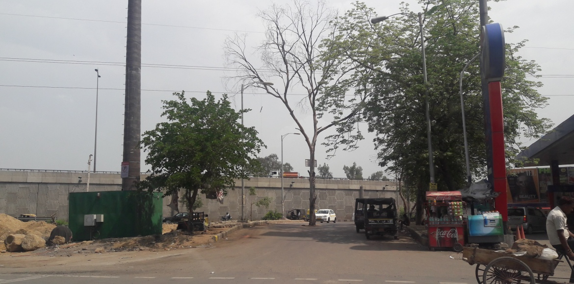 Gurgaon: What's the dead tree doing in the middle of the road!