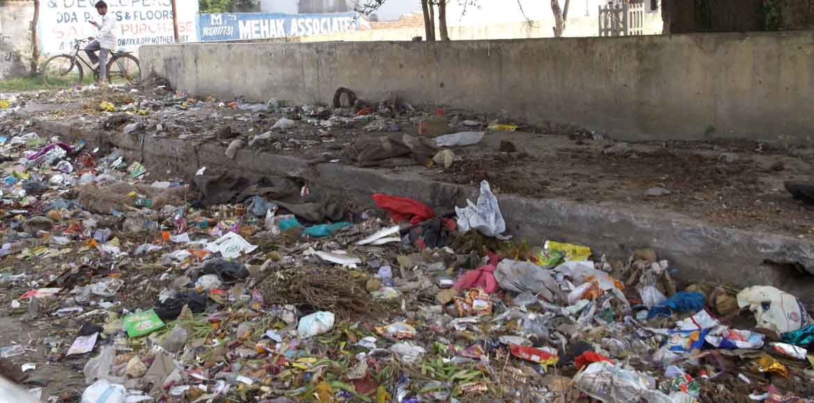 Dwarka: Sanitation goes south in Sec 8