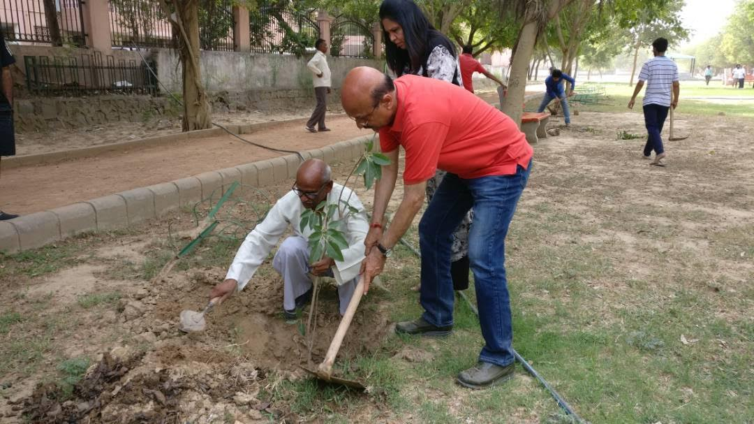 Dwarka celebrates World Environment Day with Green Circle