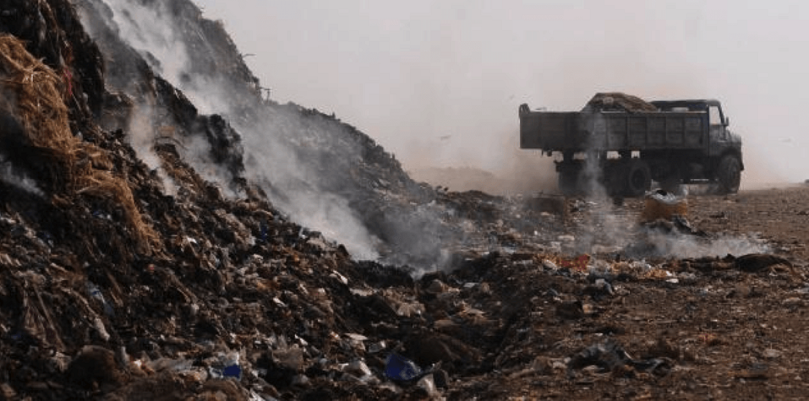 Noida Authority flouts NGT rule by burning waste i