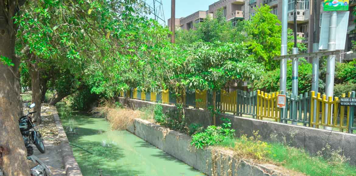 Kendriya Vihar II: This drain has remained choked for four years now!