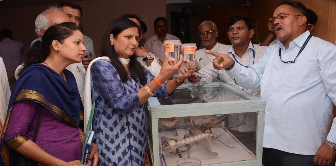 Mayor exhorts Dwarka residents to fight against vector-borne diseases