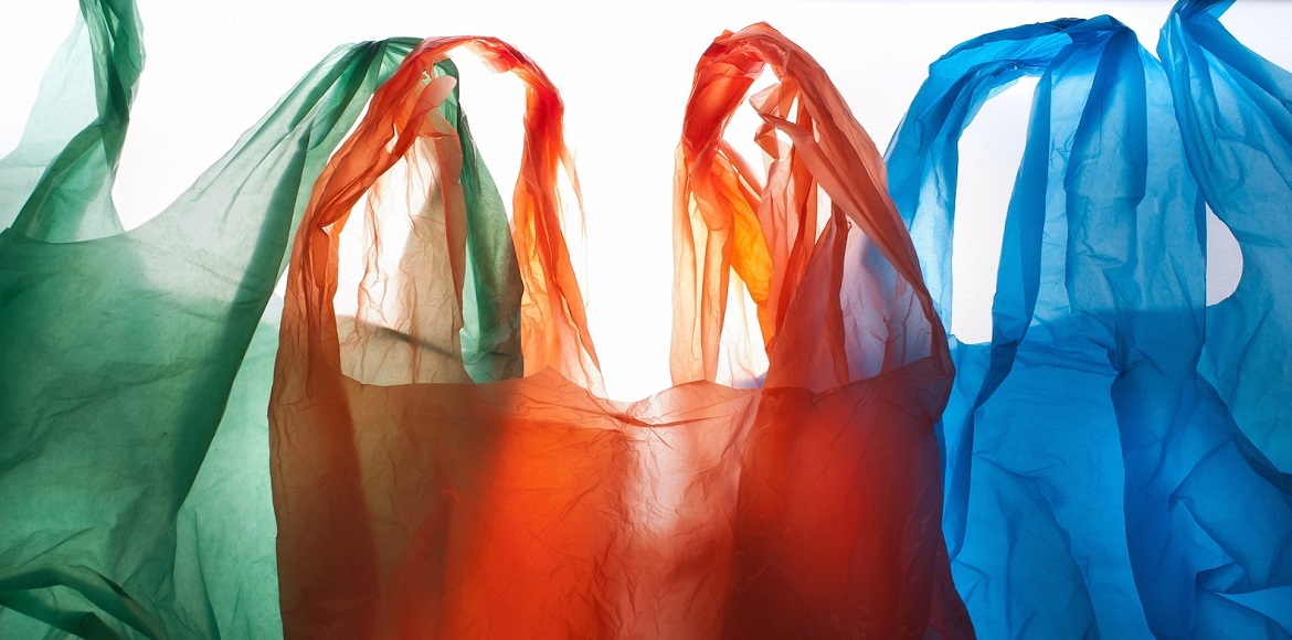 Will Delhi finally be free of plastic bags?