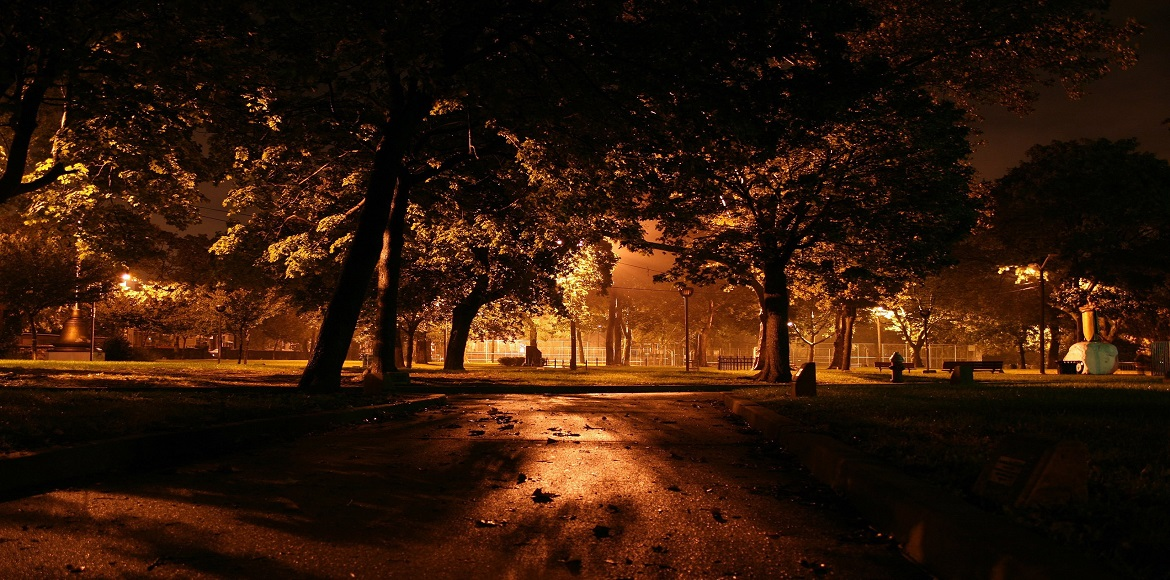 FORWAS: Poorly lit parks and roads encourage anti-social activity
