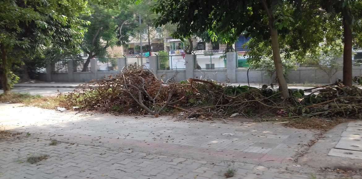 No ownership for horticultural waste in Dwarka