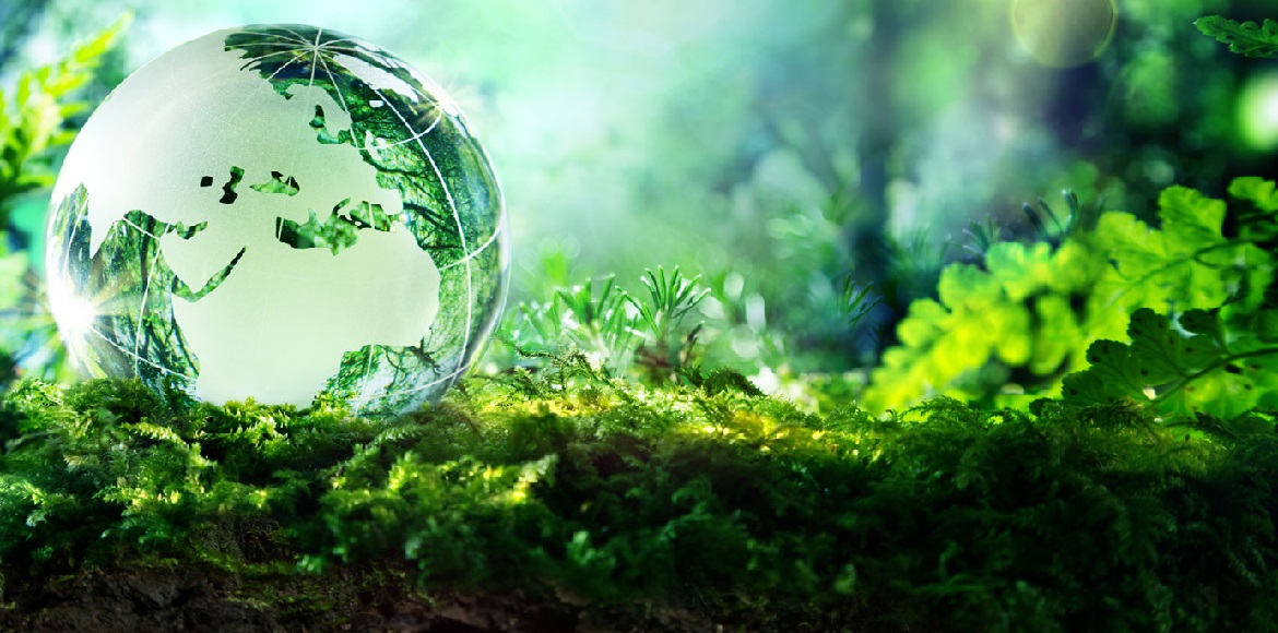 Dwarka's Green Circle to host a series of talks on environmental issues