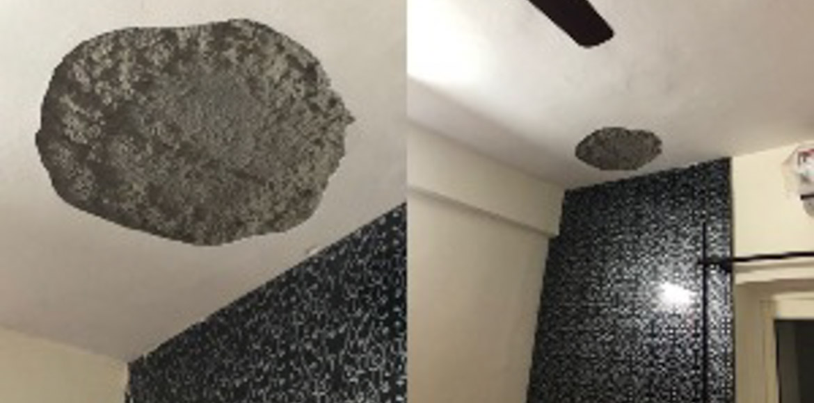 GreNo: Ceiling plaster collapses in Panchsheel Greens 2 flat