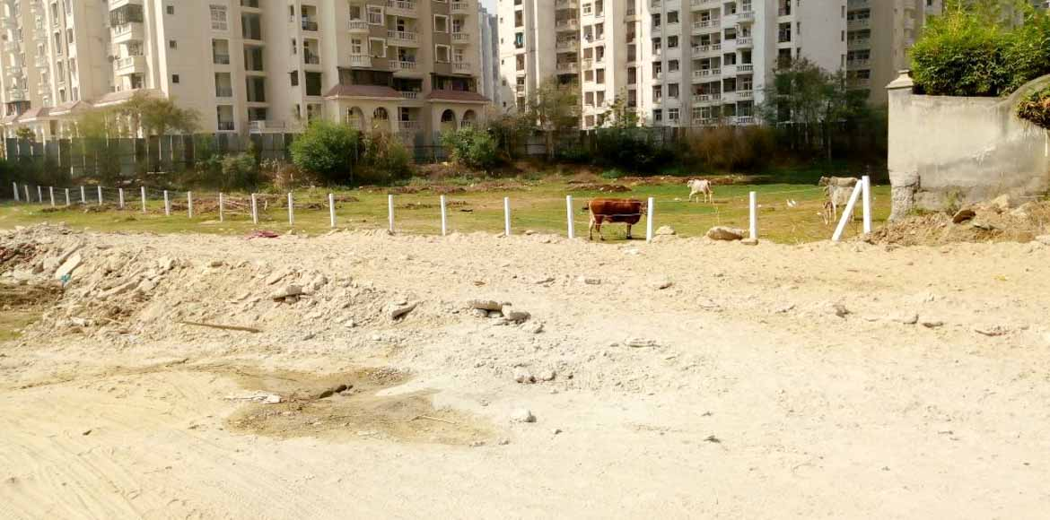 Noida residents travelling to GreNo will soon breathe easy