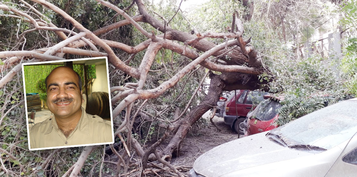 RESIDENT SPEAK: Fall of trees during thunderstorms a big concern