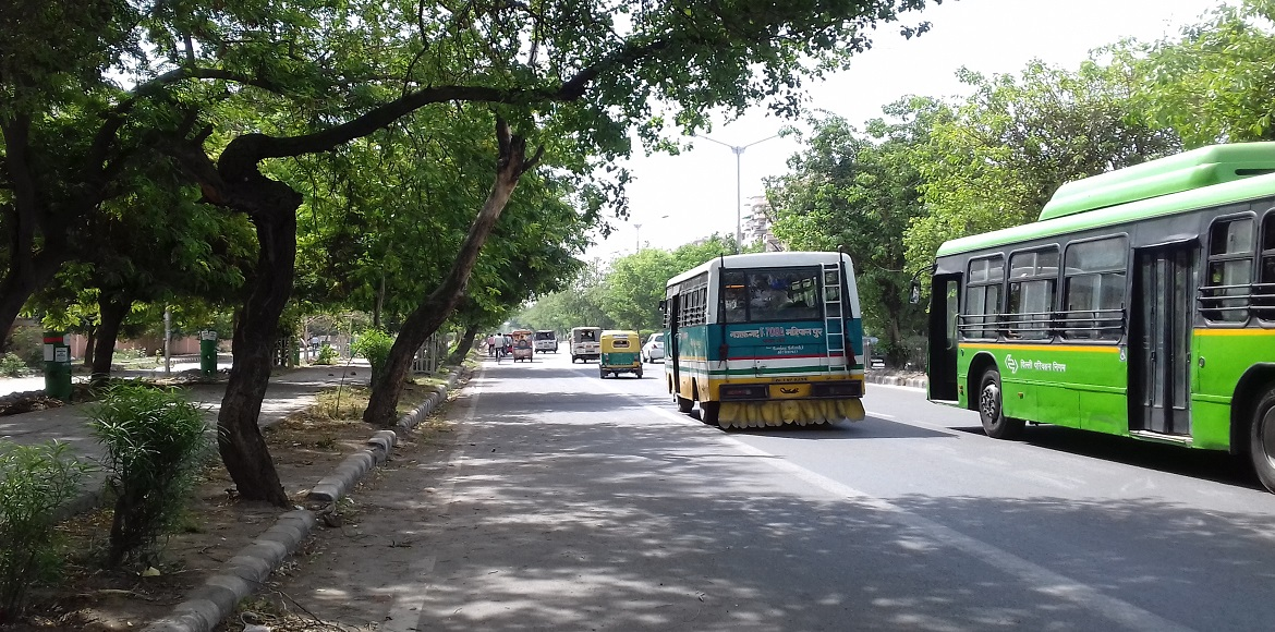 Dwarka: Experts muster reasons for tree's vulnerability to fall during storms