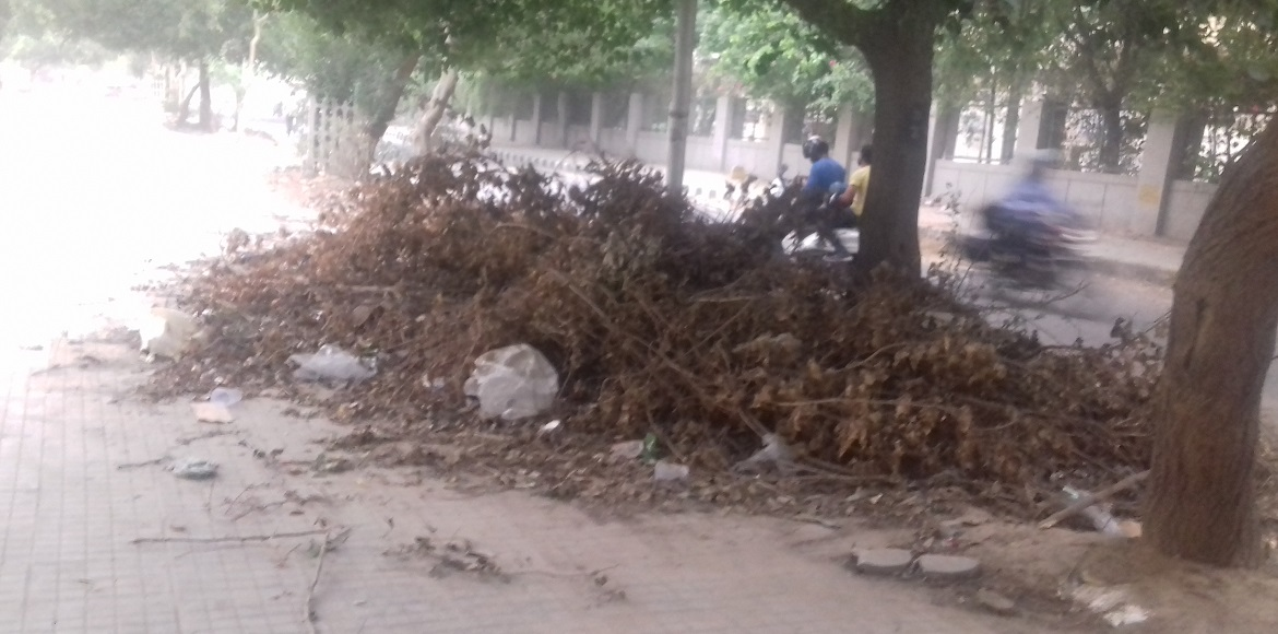 Dwarka: SDMC plans action against RWAs for mismanagement of horticulture waste