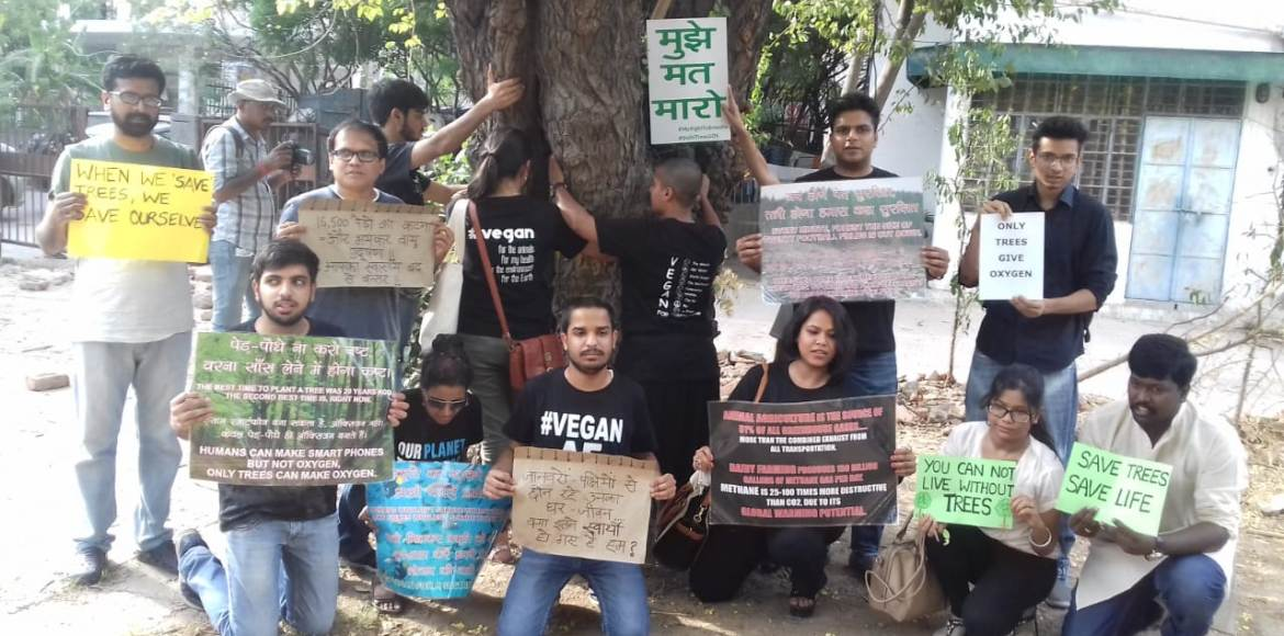 Delhi's Chipko Movement takes root; forces