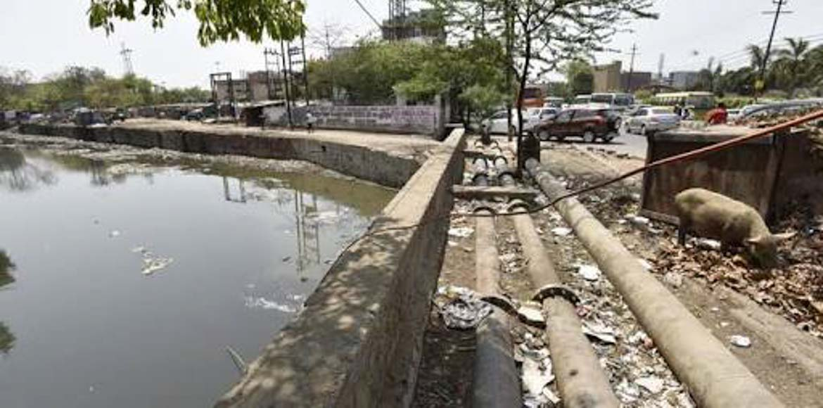 Noida Authority begins cleaning of drain in Sector