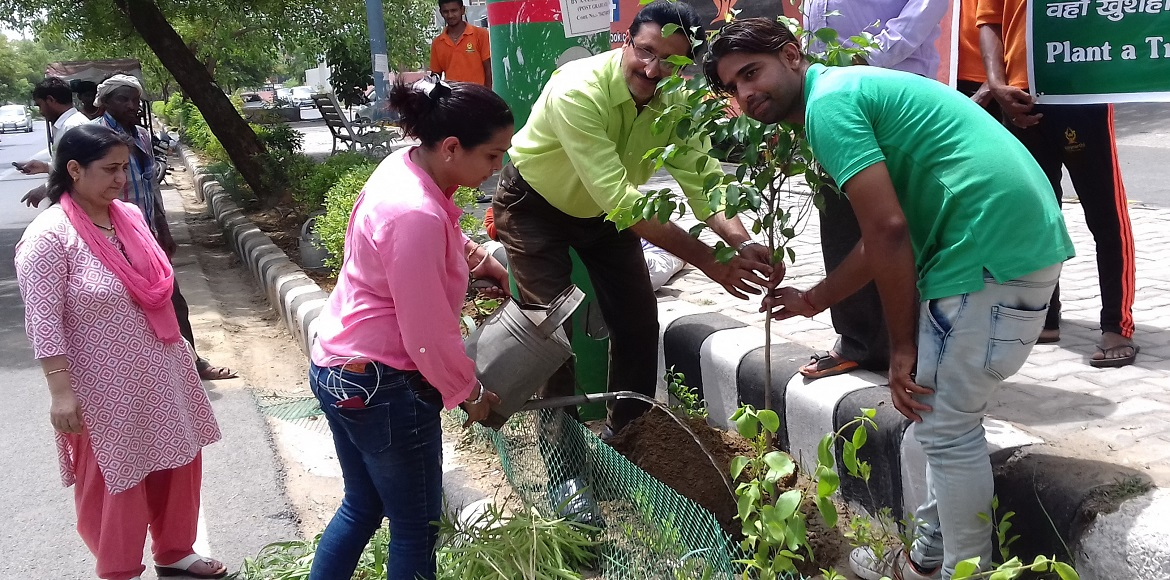 Dwarka: RWAs, authorities come together to carry out extensive plantation drive