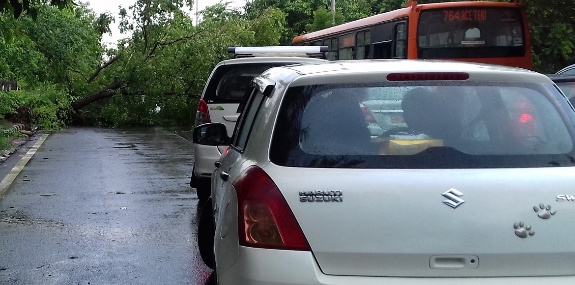 Dwarka: Commuters wary of falling trees during rai