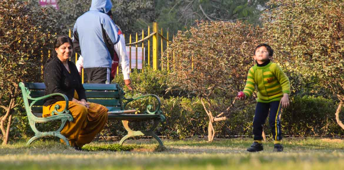Noida Authority handpicks 5 RWAs to maintain the parks in their sectors