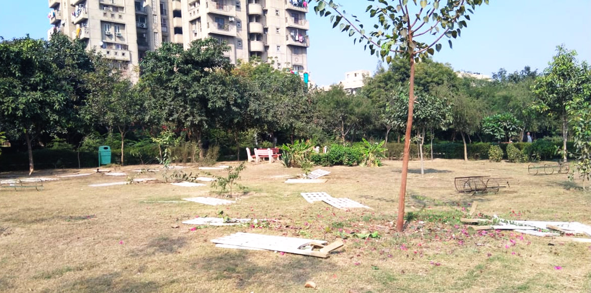 Dwarka: Agitated residents clash with officials to stop pruning of trees at park