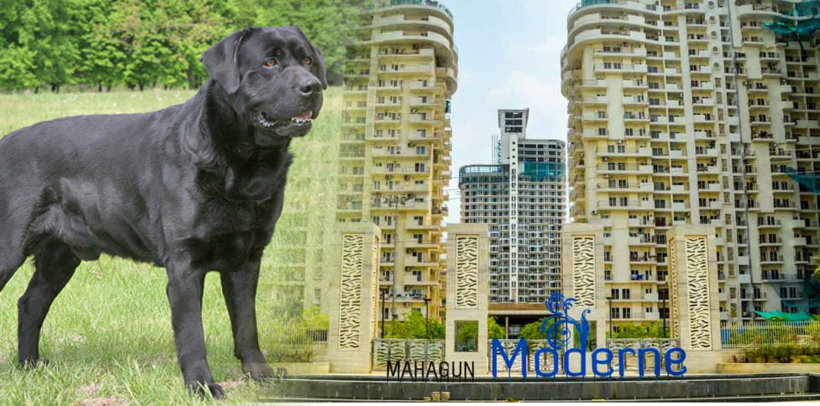 Mahagun Moderne: Case registered against owner of
