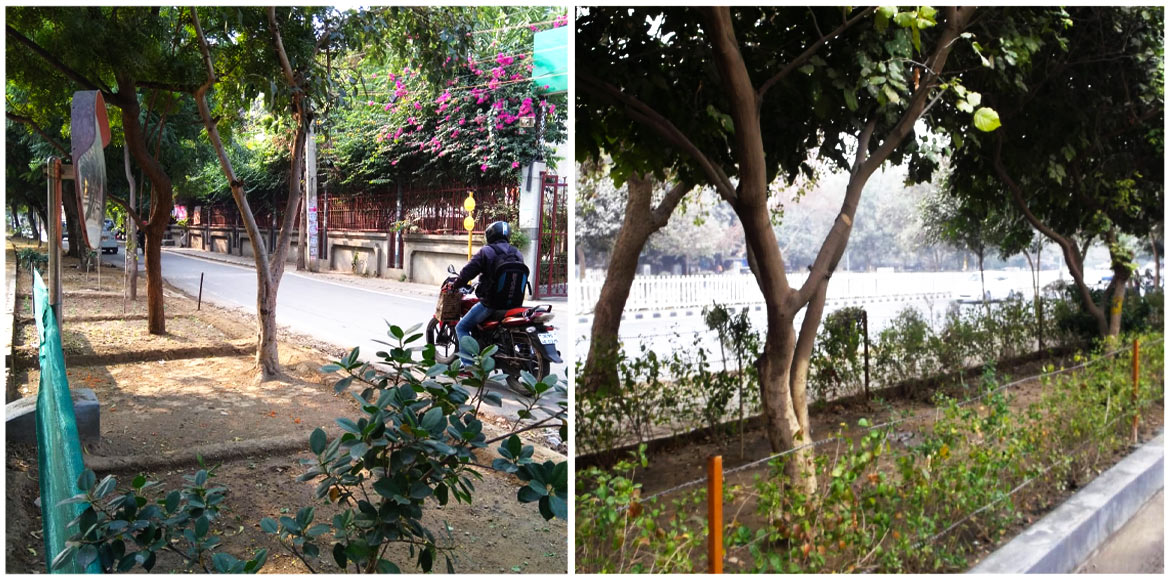 RWAs across Dwarka developing 'green areas'; civic agencies blamed