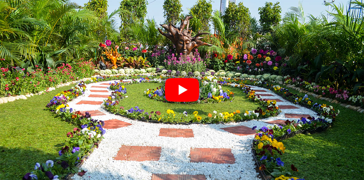33rd Noida flower show beautifies event; visitors,