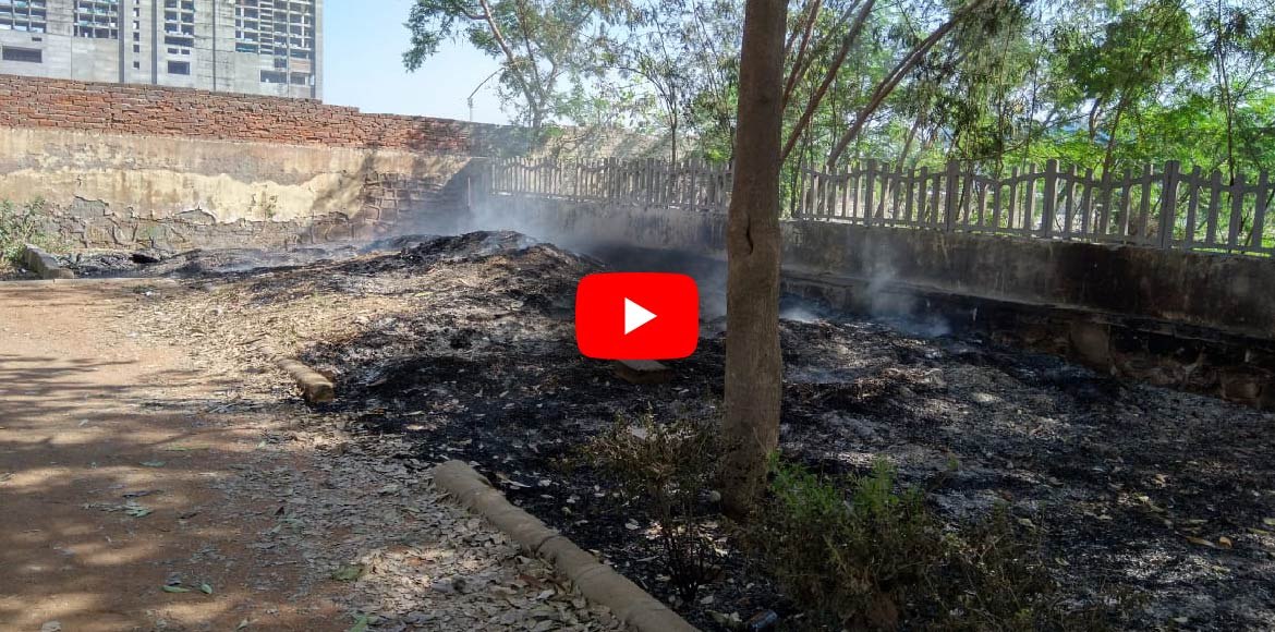 Dwarka: Horticulture waste burning mars beauty of Sec 14 park; poses health risk