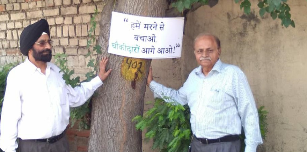 Nature lovers join hands against proposed felling of 13k trees at Dwarka