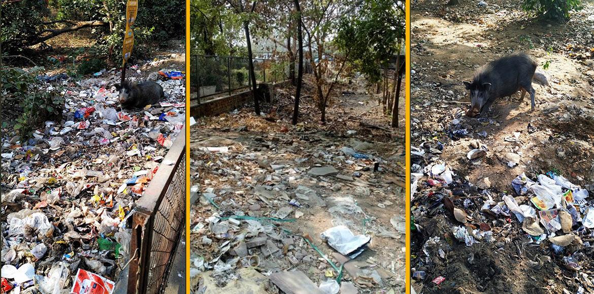 Gurugram: Dumping of waste at green belt causes se