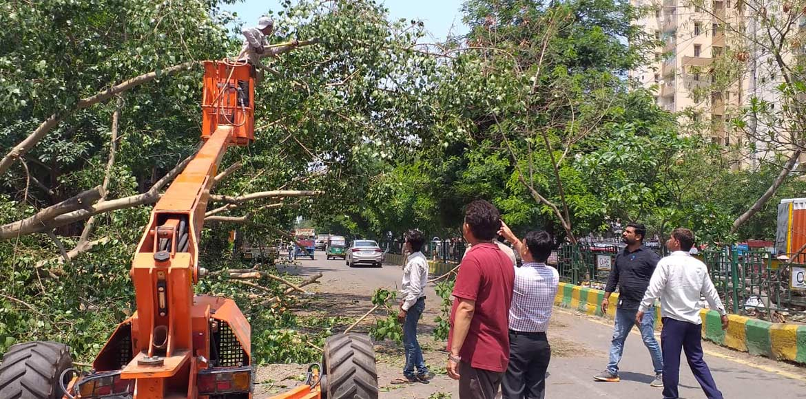 Tree falls near Shipra Sun City in Indirapuram, no