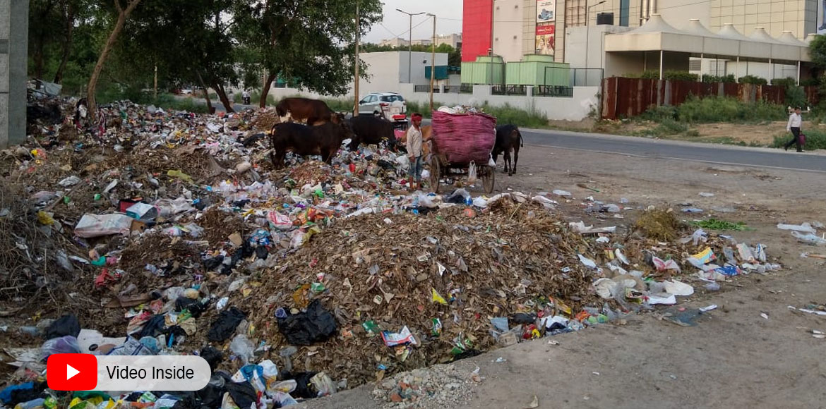 Piles of garbage, unkept dhalao in Dwarka's Sec 13 raise serious concerns
