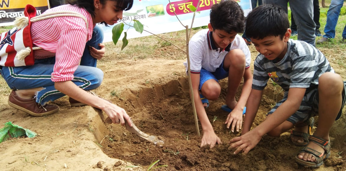 Activities galore on 'World Environment Day' at Dwarka
