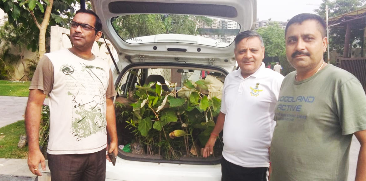 Heartfelt gesture: Two Ghaziabad men plant joy