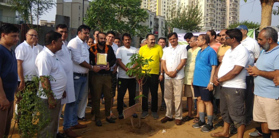 Gurugram: Sare Homes residents plant saplings in v