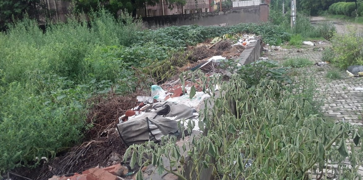 Vacant plot in Dwarka sector 10 becomes nuisance for society